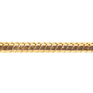 蛇骨鏈系列